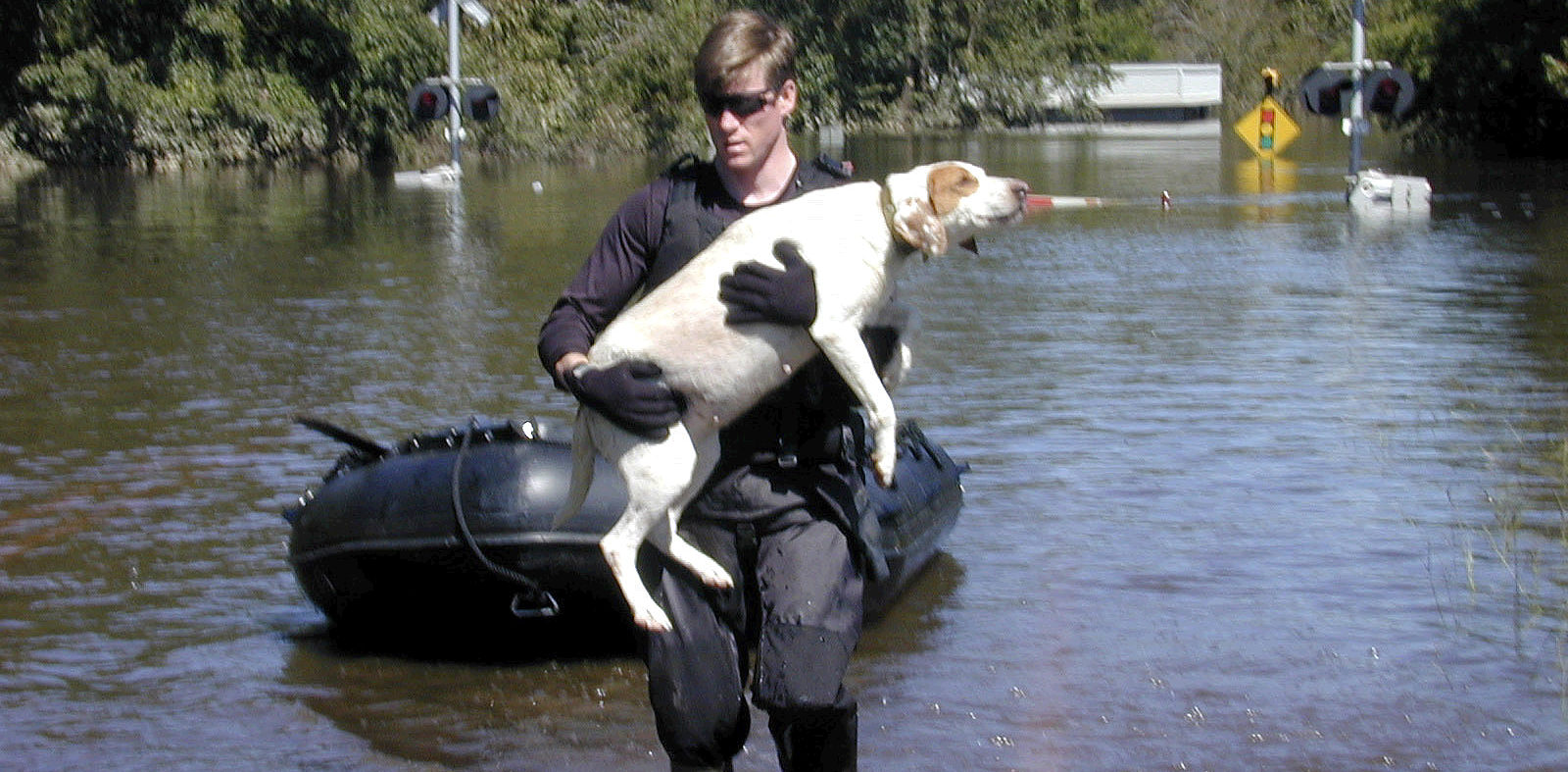 How to Prepare Your Pet for a Hurricane and Other Natural Disasters